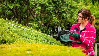 Taille-haies Universal HedgeCut 65 Bosch