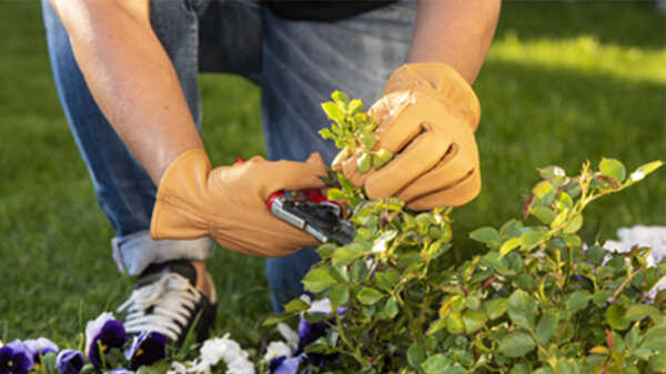 Les gants de jardinage 703 Felco