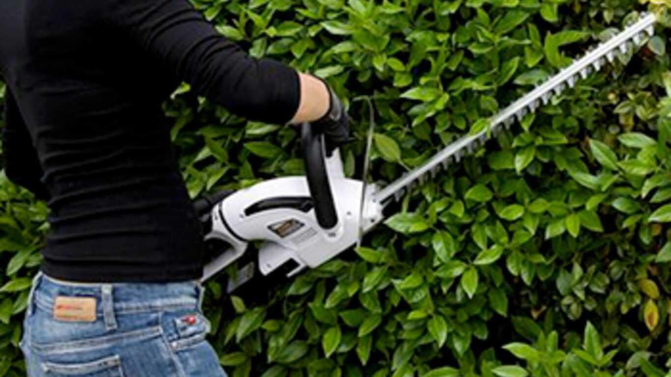 Taille-haies électrique AHT Alpina