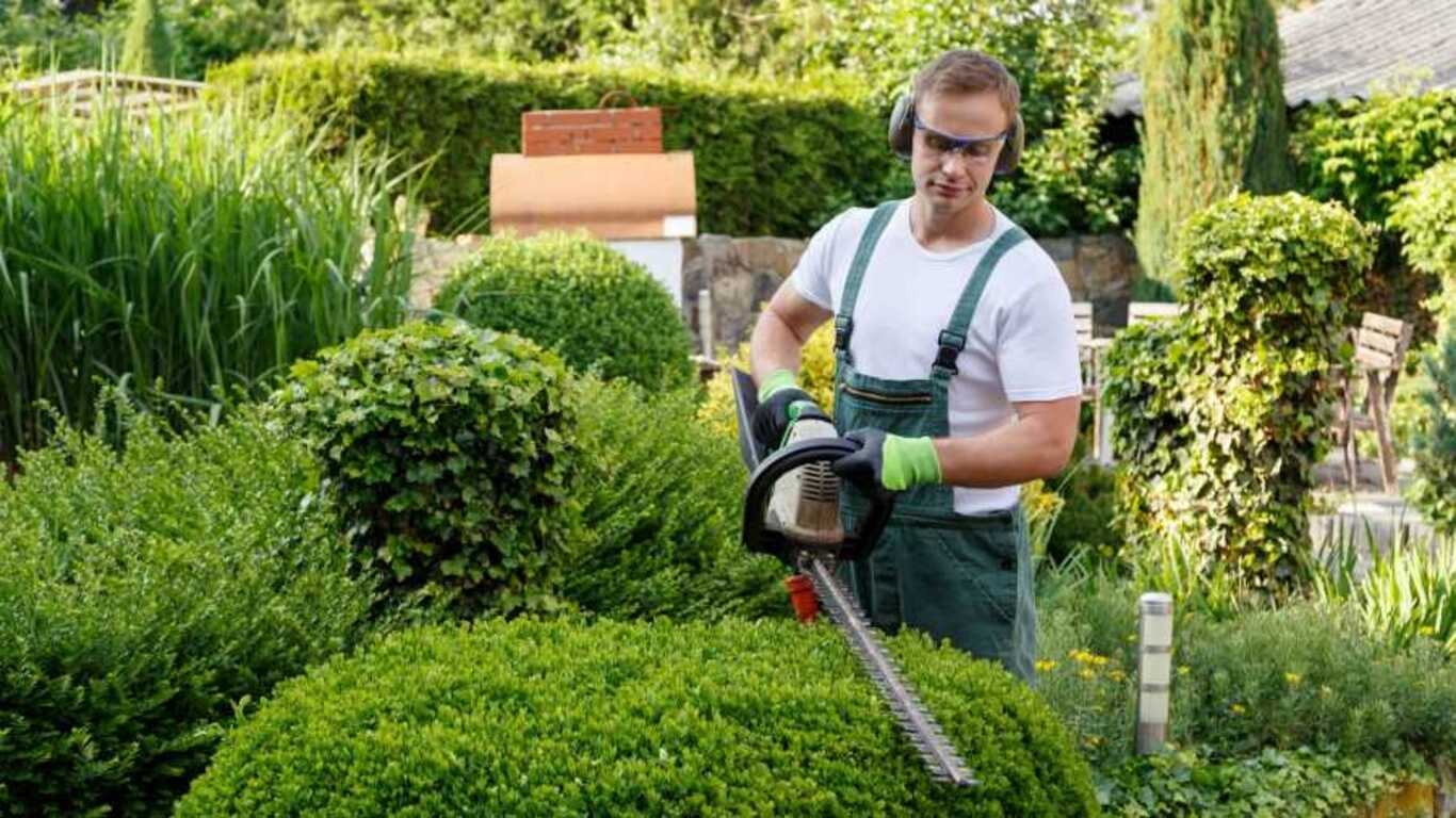 Meilleurs vêtements et accessoires de jardinage